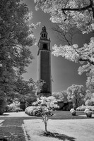 Carillon in IR